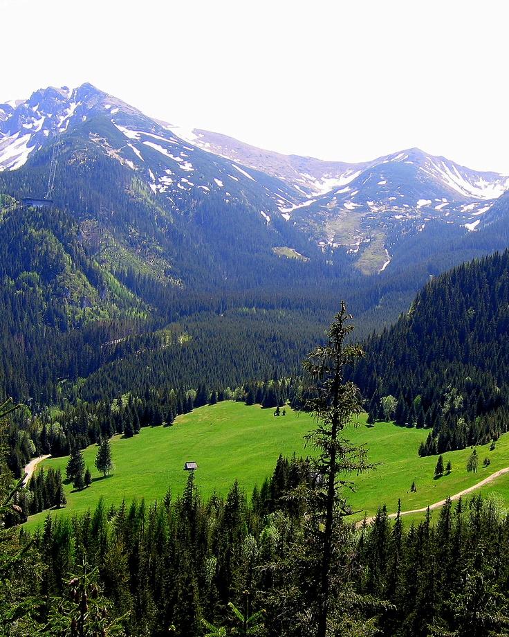 Góry (1)