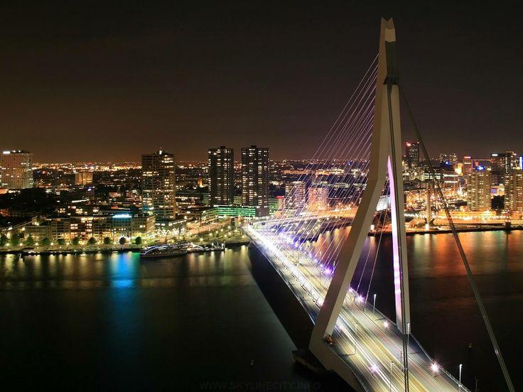 Nowoczesny Rotterdam (12)