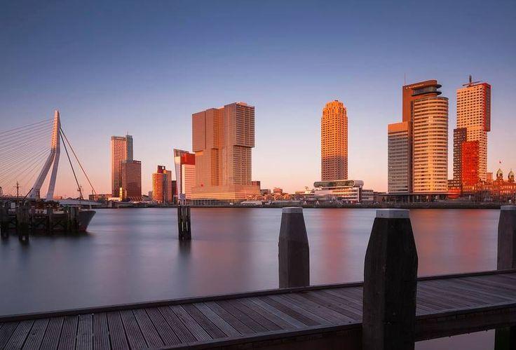 Nowoczesny Rotterdam (8)