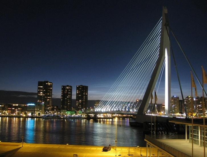 Nowoczesny Rotterdam (9)