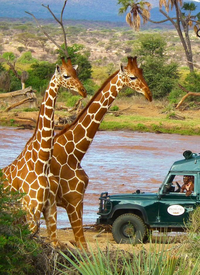 Objazdowe wakacje Kenia (2)