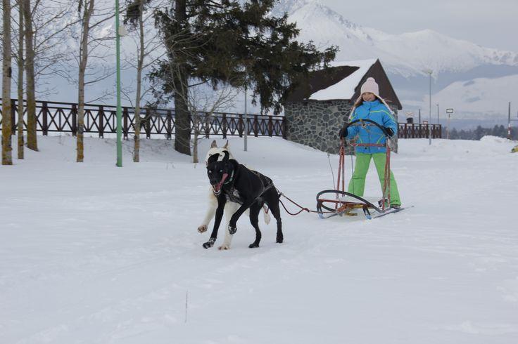 Wakacje na nartach Slowacja (3)