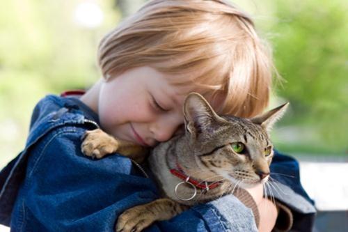Wakacje ze zwierzetami (3)