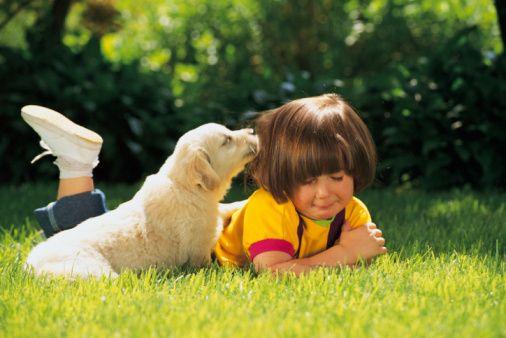 Wakacje ze zwierzetami (6)