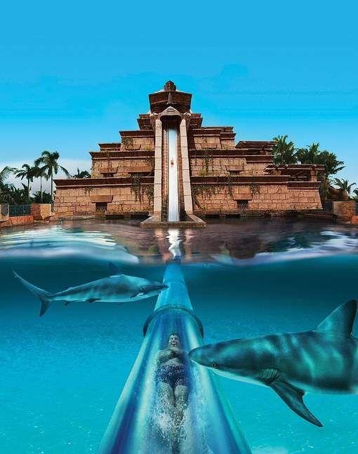 Wspaniale wyspy karaibskie Bahamy (3)