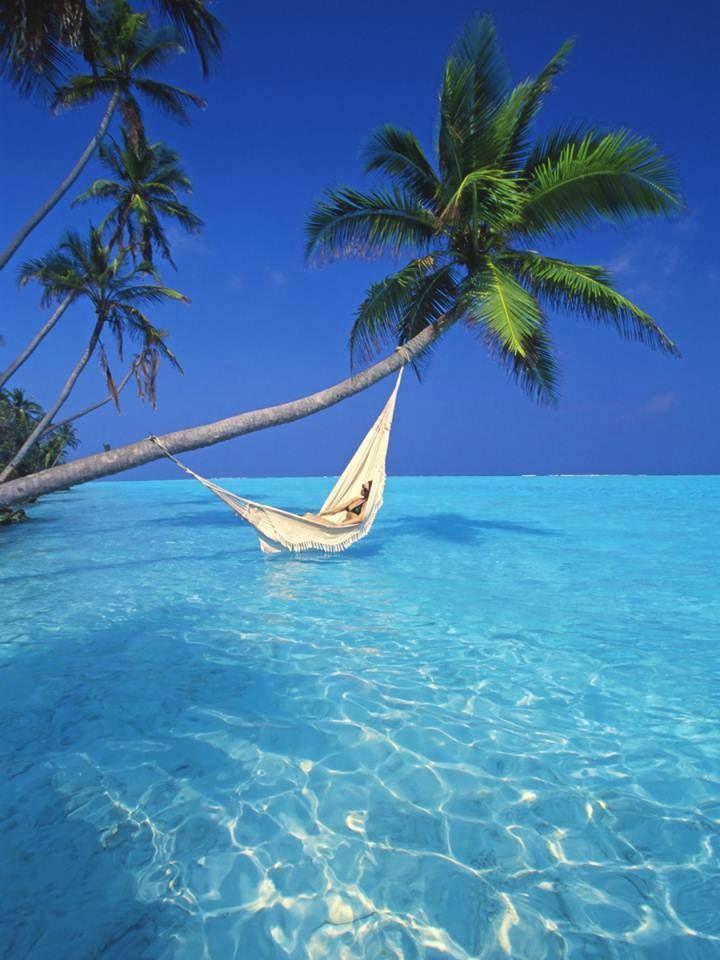 Wspaniale wyspy karaibskie Barbados (3)